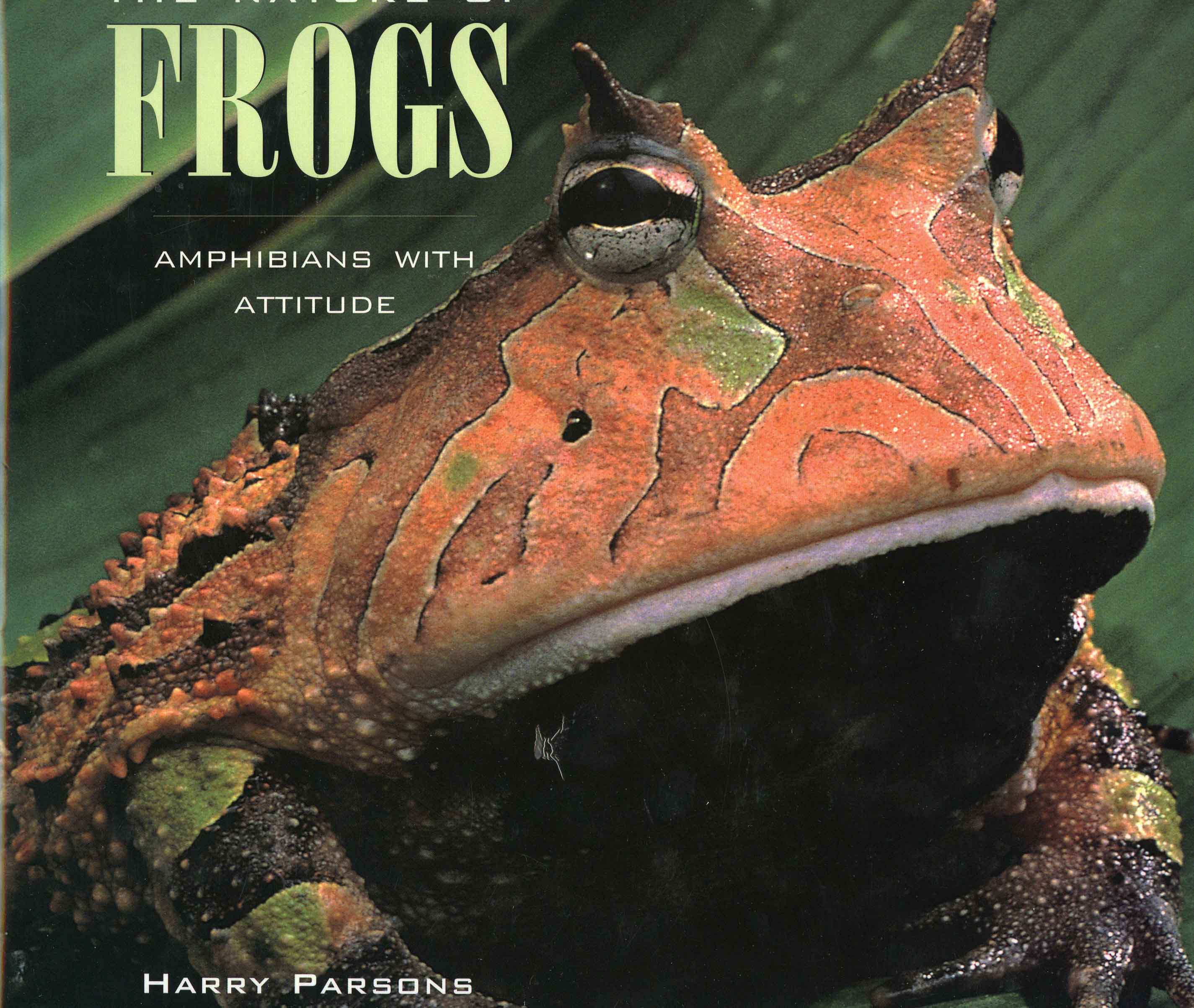 Image for The Nature of Frogs: Amphibians with an Attitude,