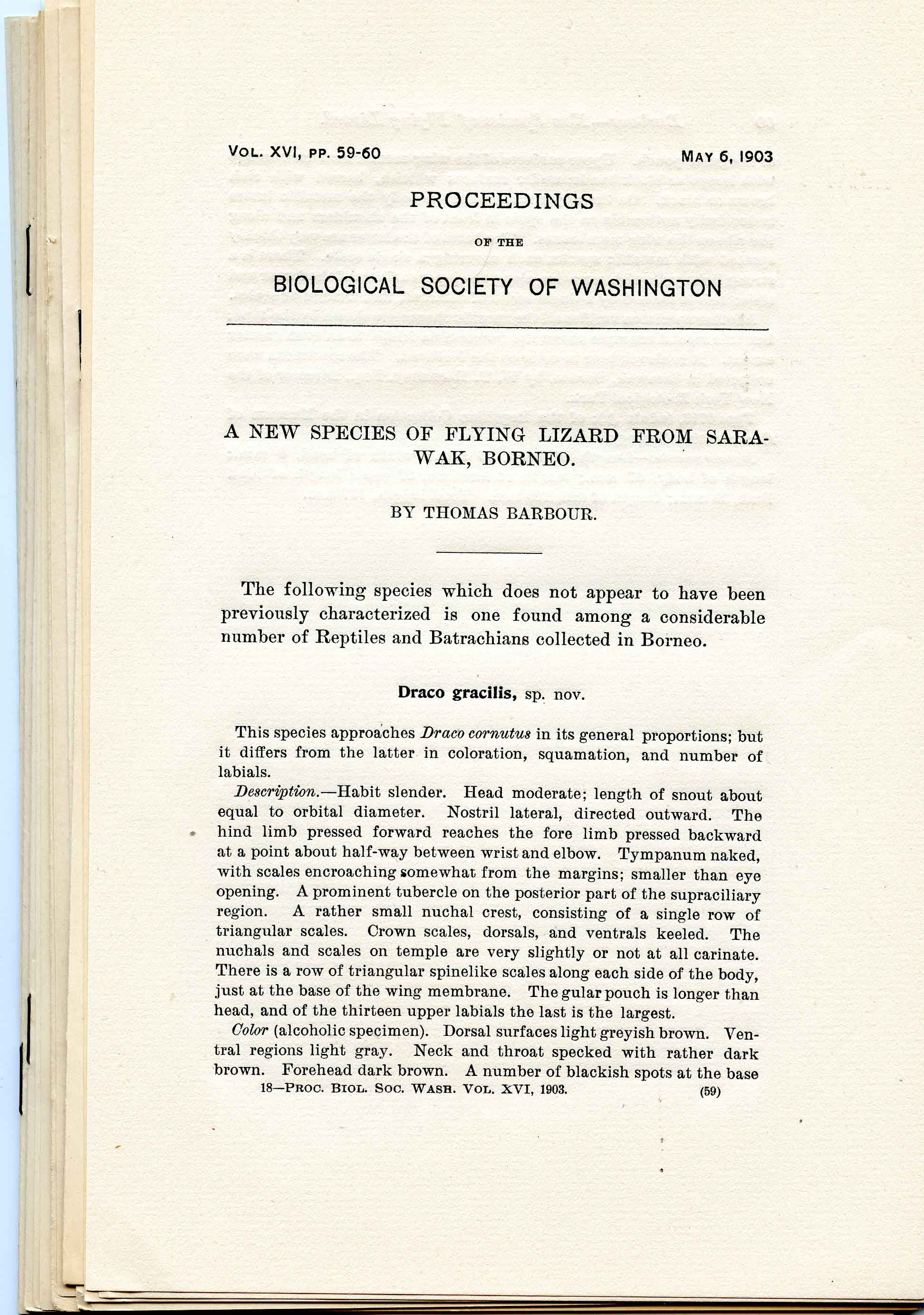 Image for Bundle #7 (Proceedings of the Biological Society of Washington),