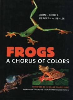 Image for Frogs: A Chorus of Colors,