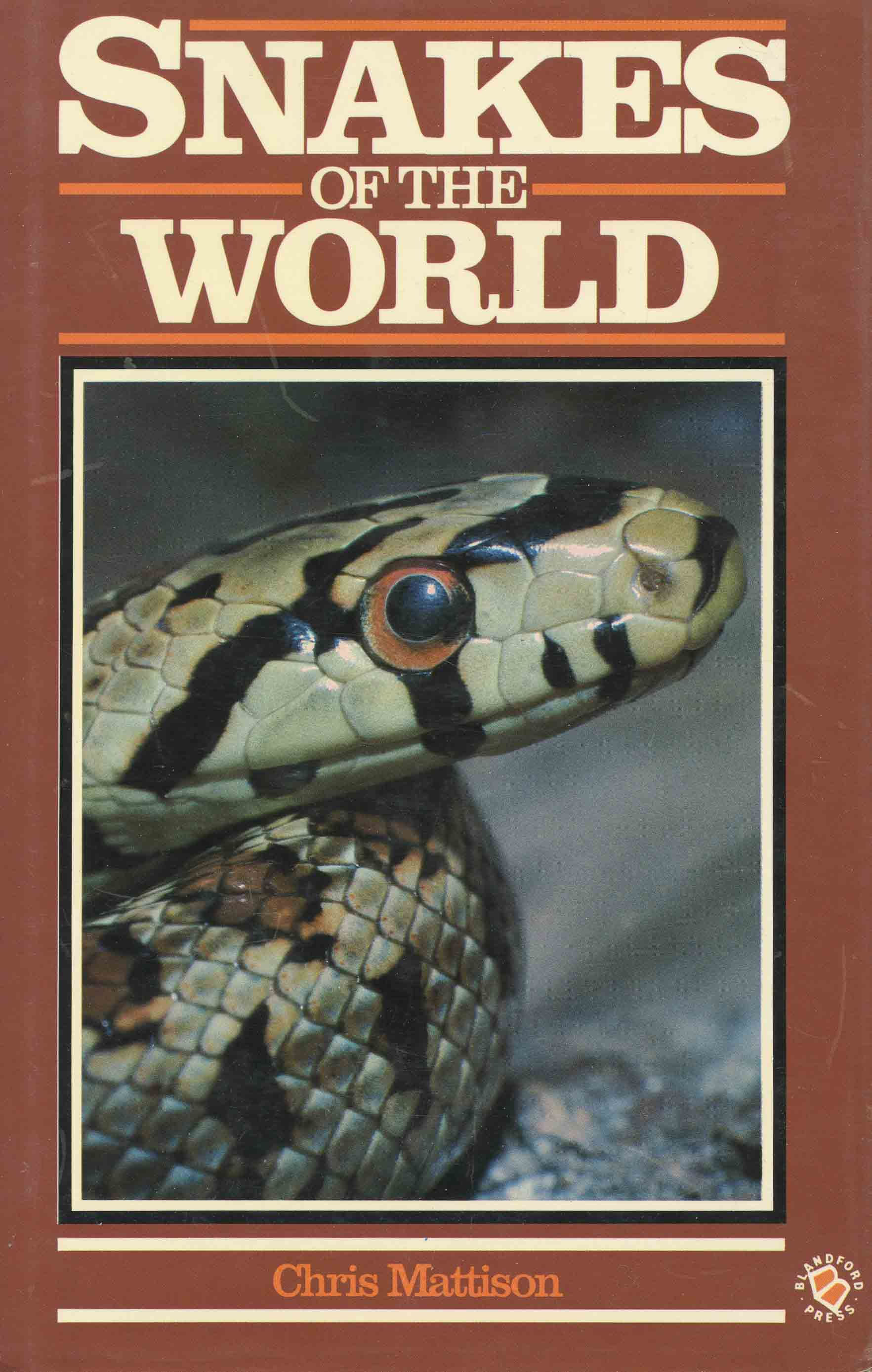 Image for Snakes of the World,