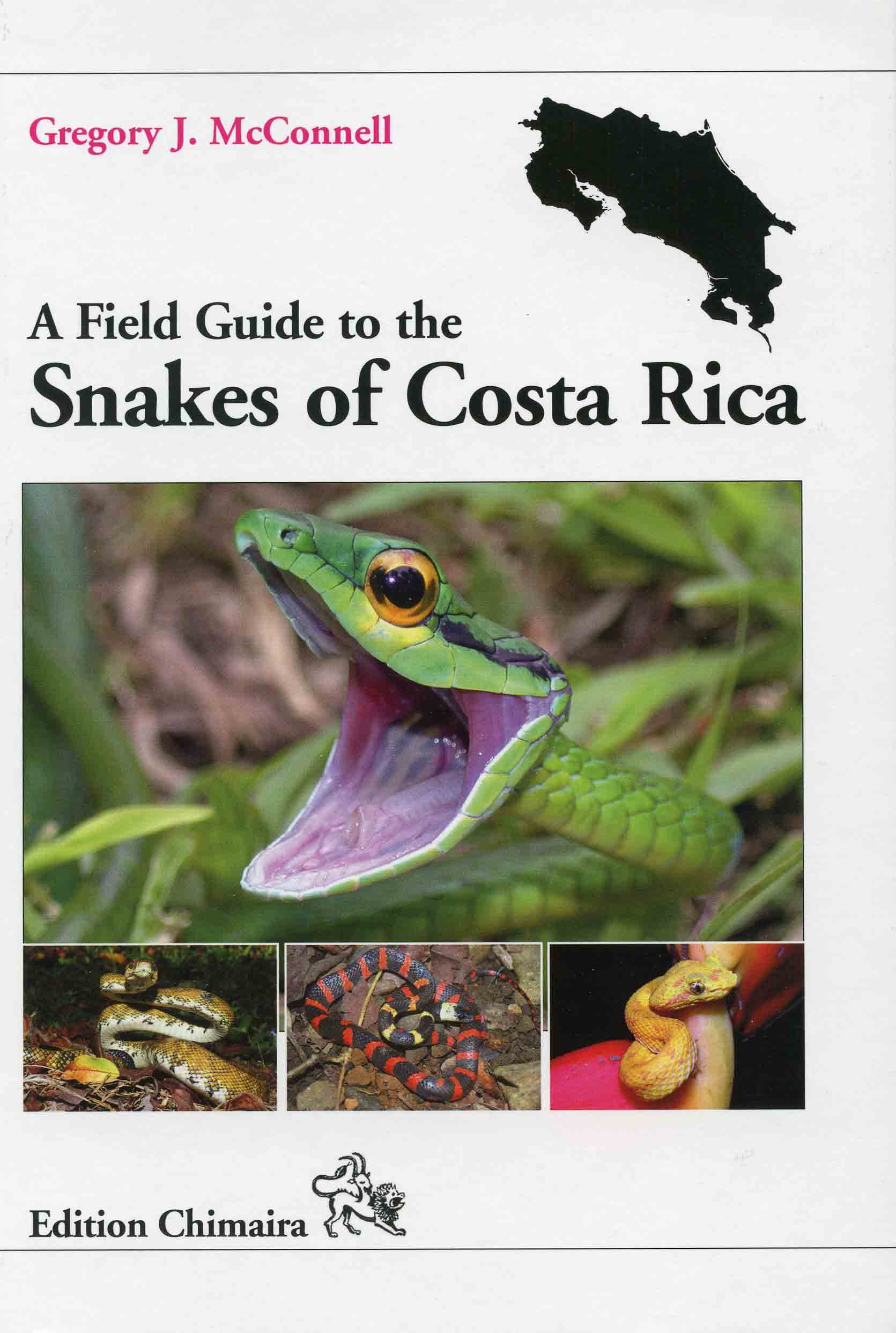 Image for A Field Guide to the Snakes of Costa Rica,