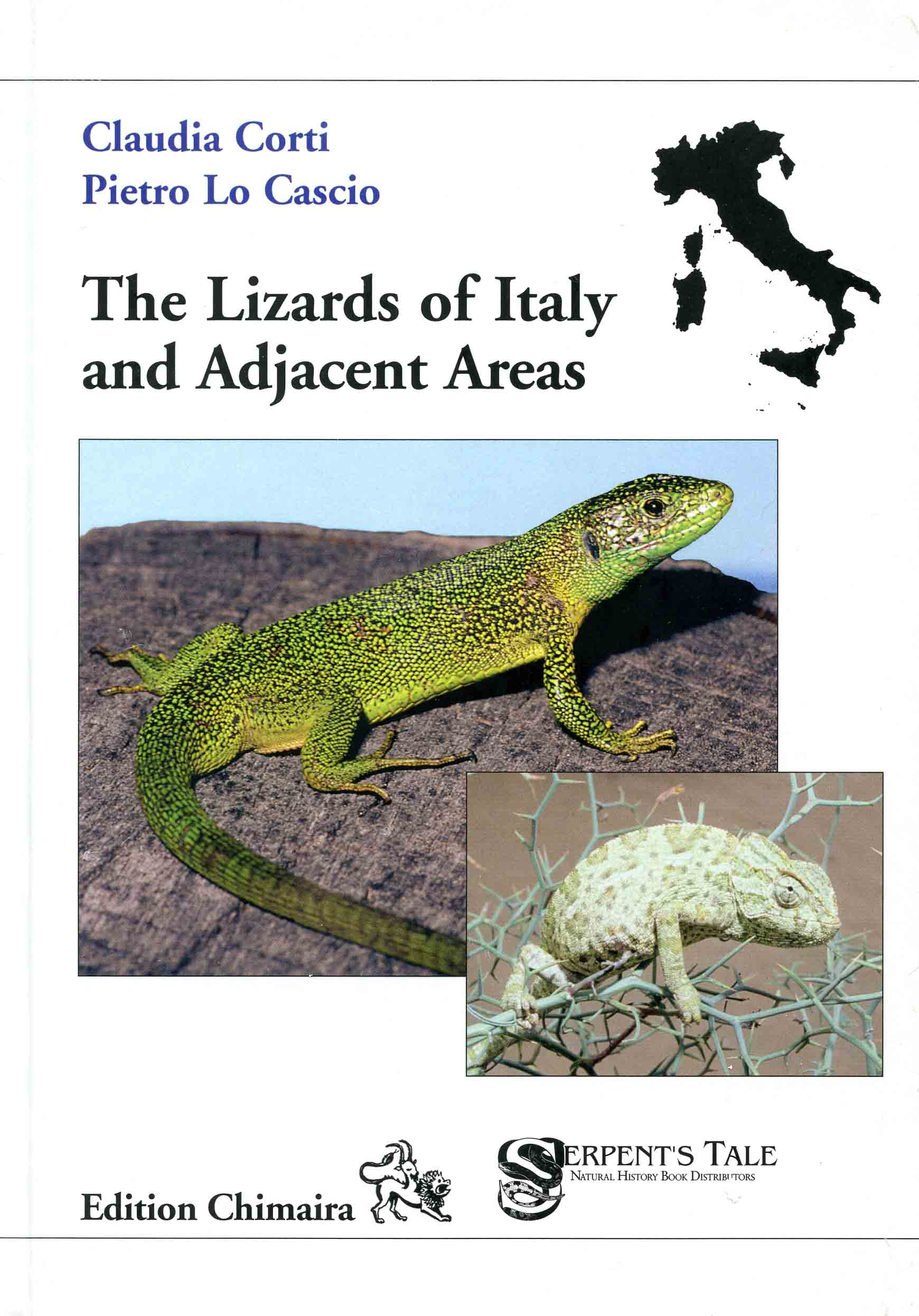 Image for The Lizards of Italy and Adjacent Areas,