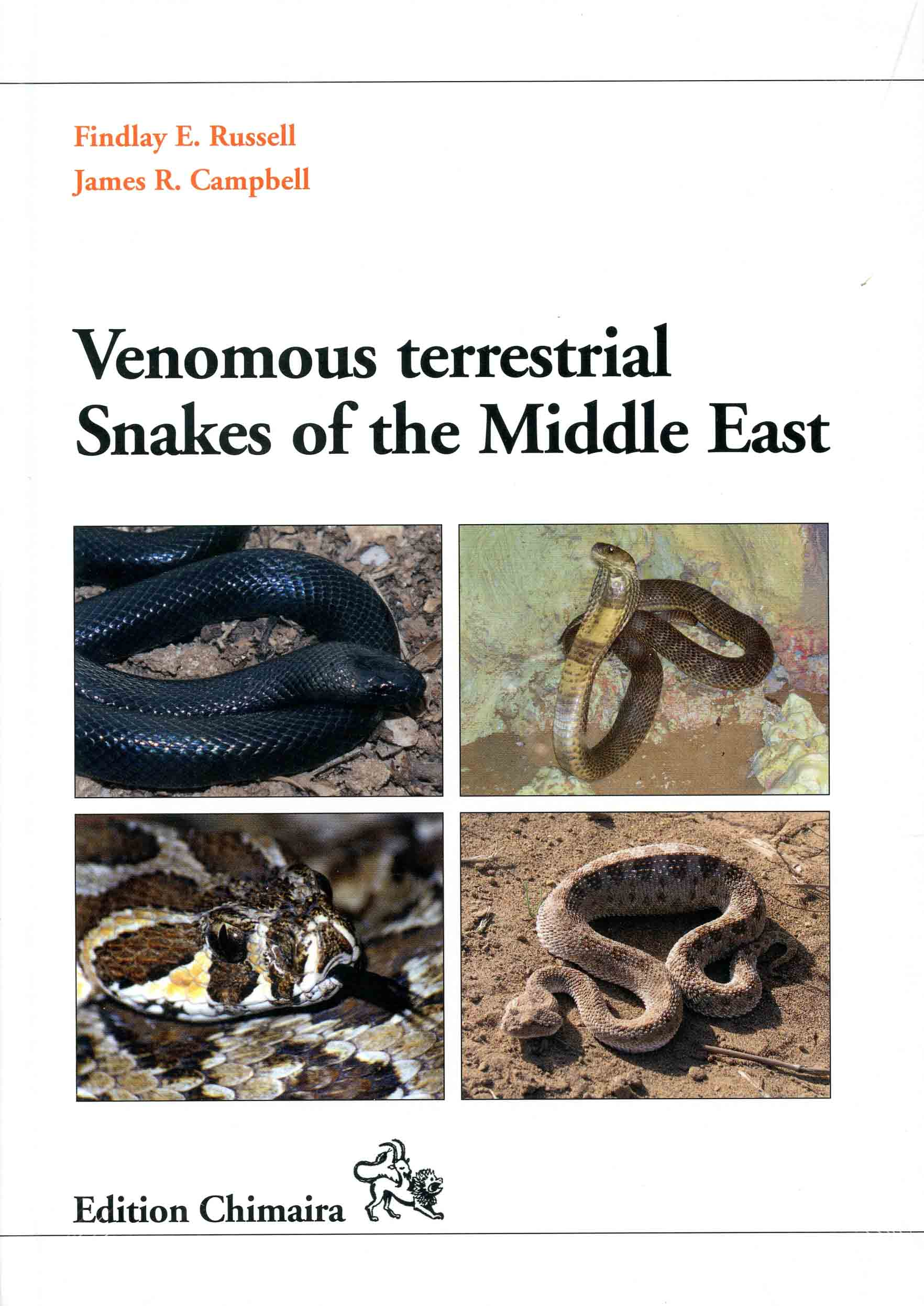 Image for Venomous Terrestrial Snakes of the Middle East,