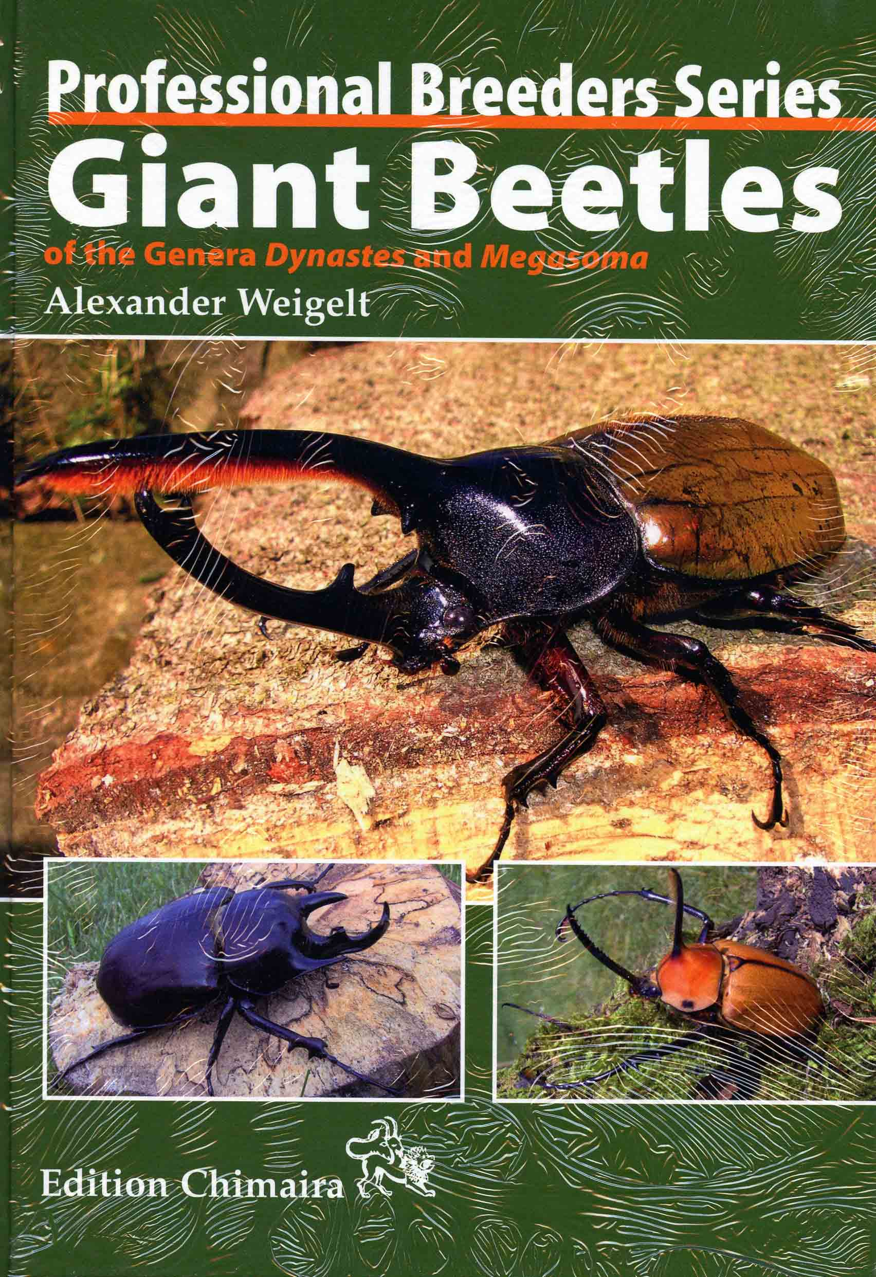 Image for Giant Beetles of the Genera Dynastes and Megasoma,