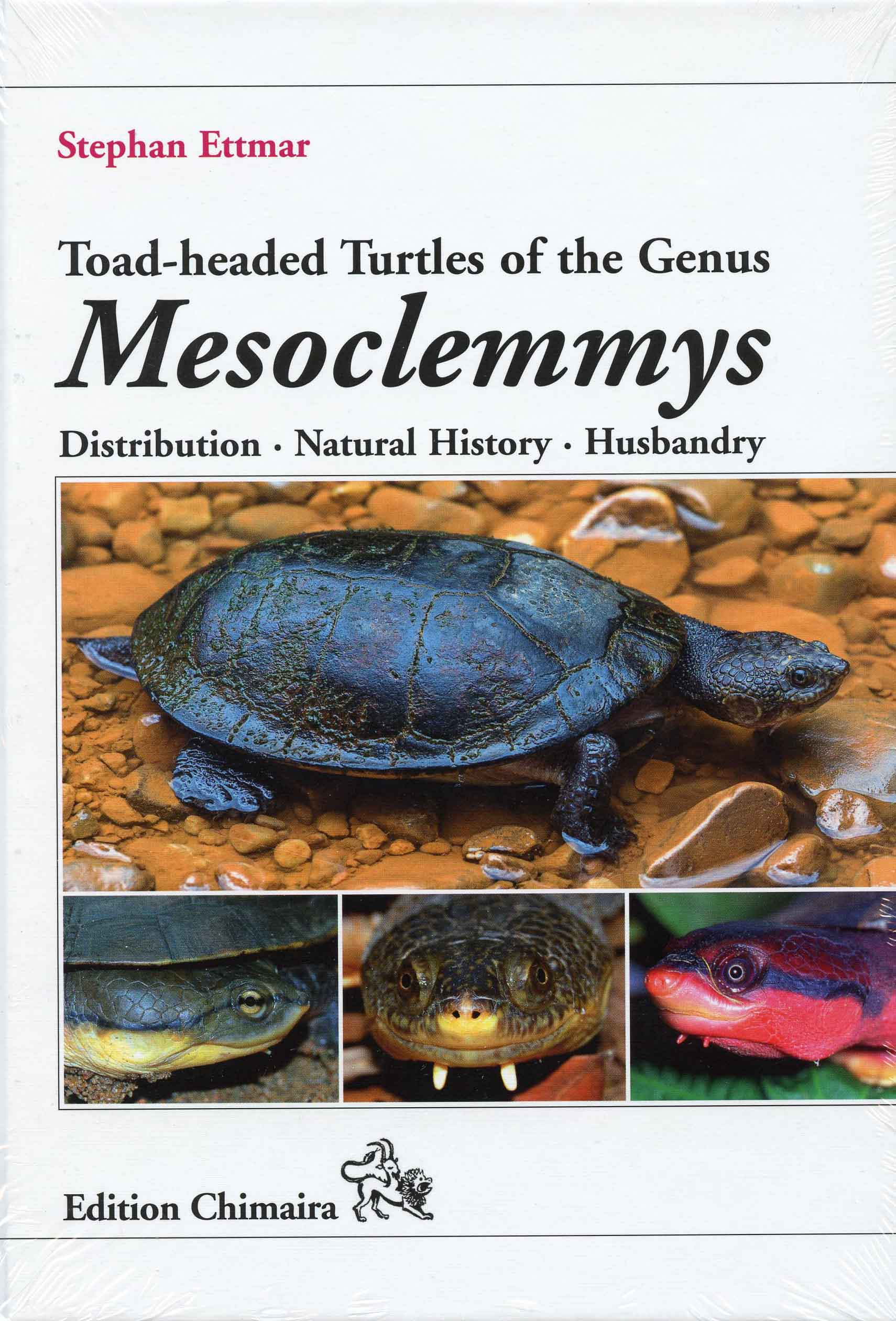 Image for Toad-headed Turtles of the Genus Mesoclemmys, Distribution, Natural History, Husbandry,