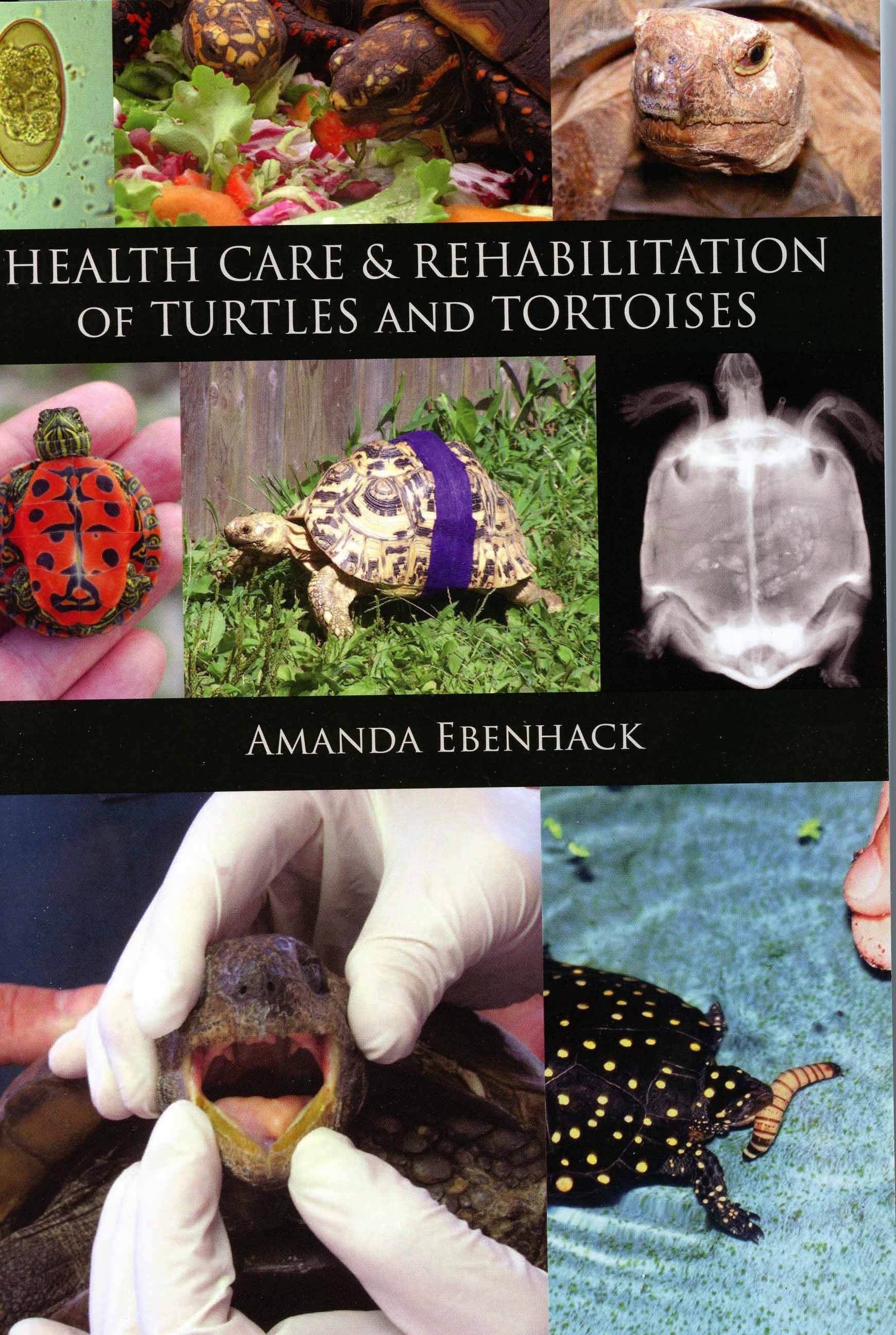 Image for Health Care & Rehabilitation of Turtles and Tortoises,