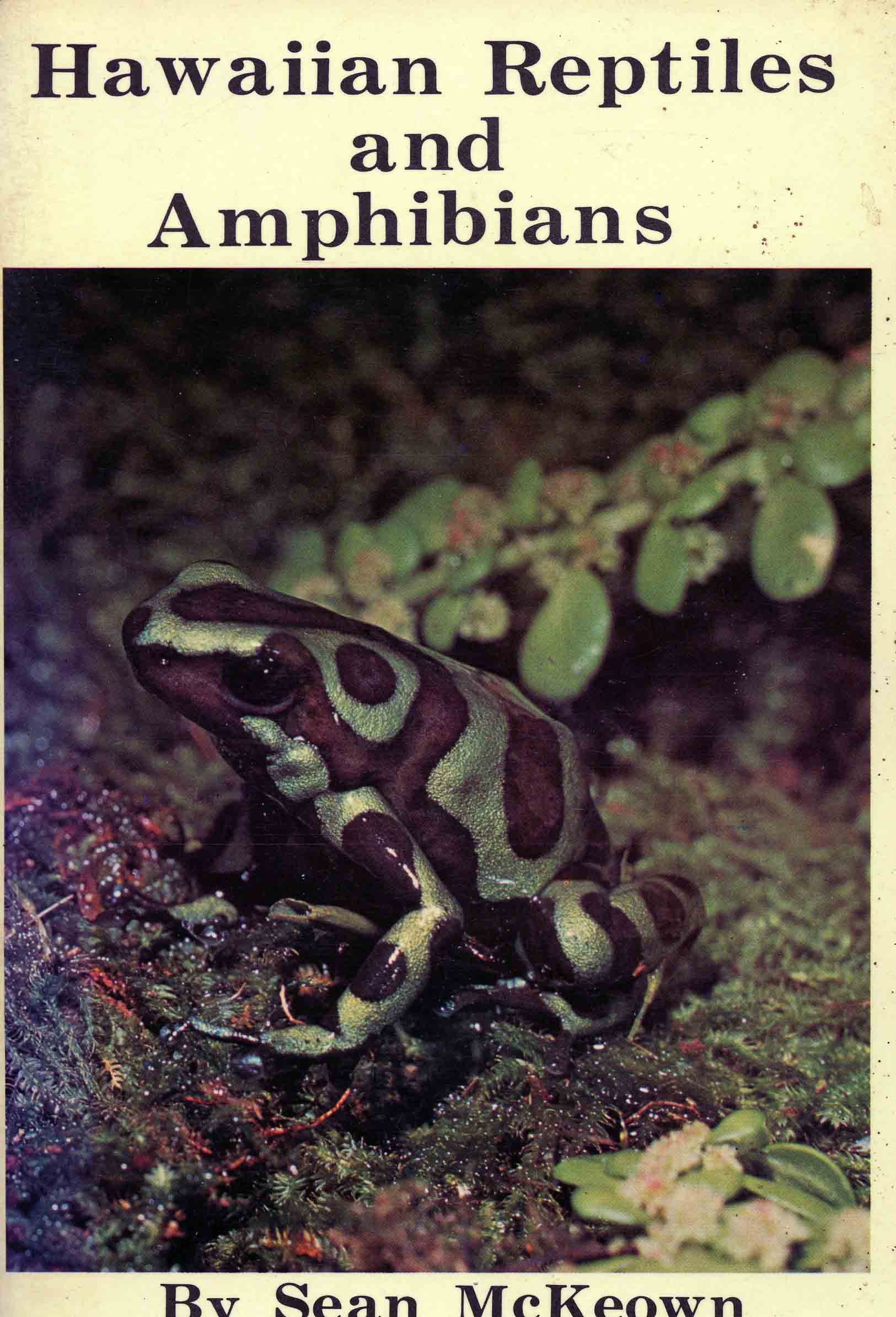 Image for Hawaiian Reptiles and Amphibians,