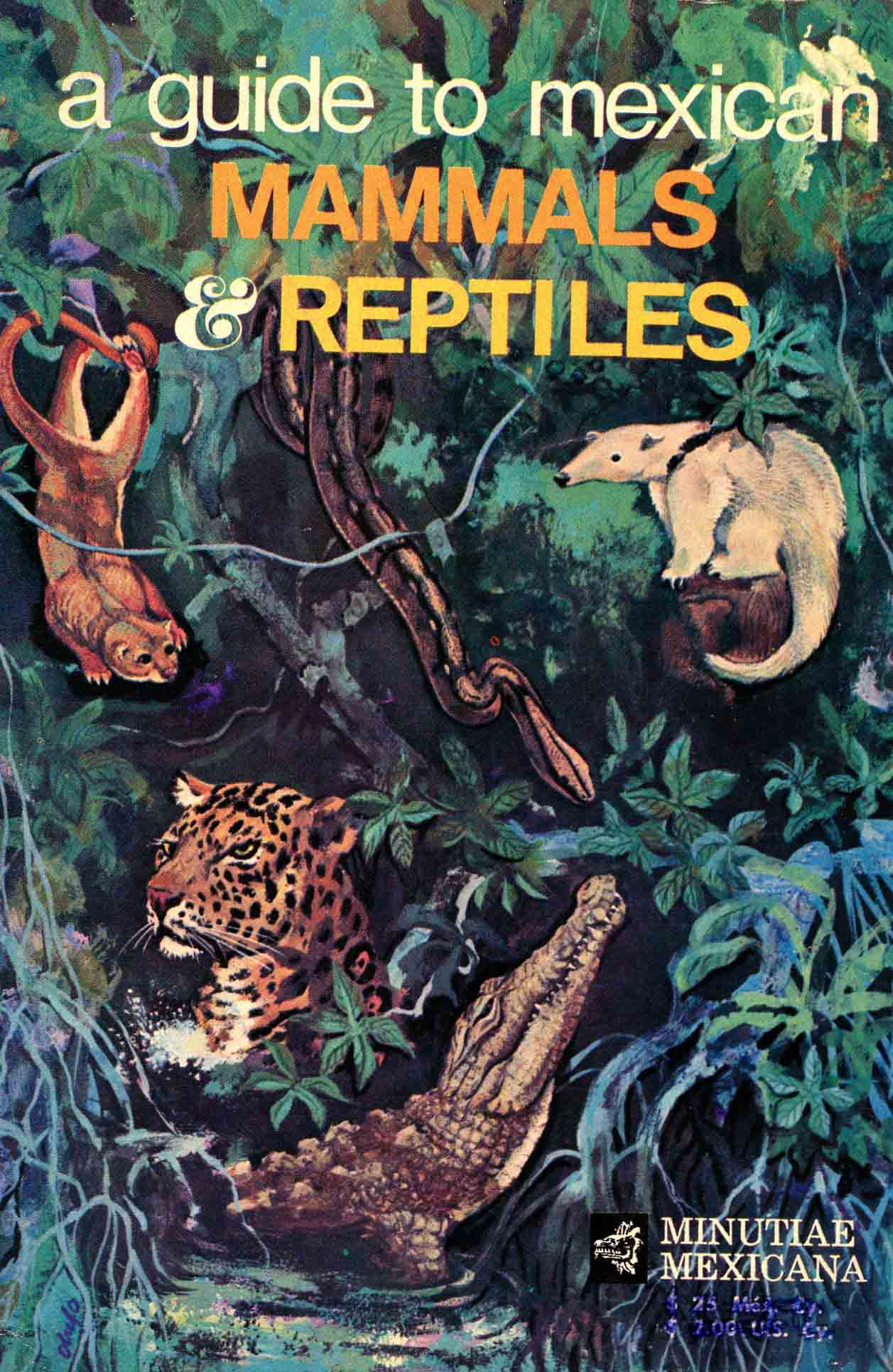 Image for A Guide to Mexican Mammals & Reptiles,