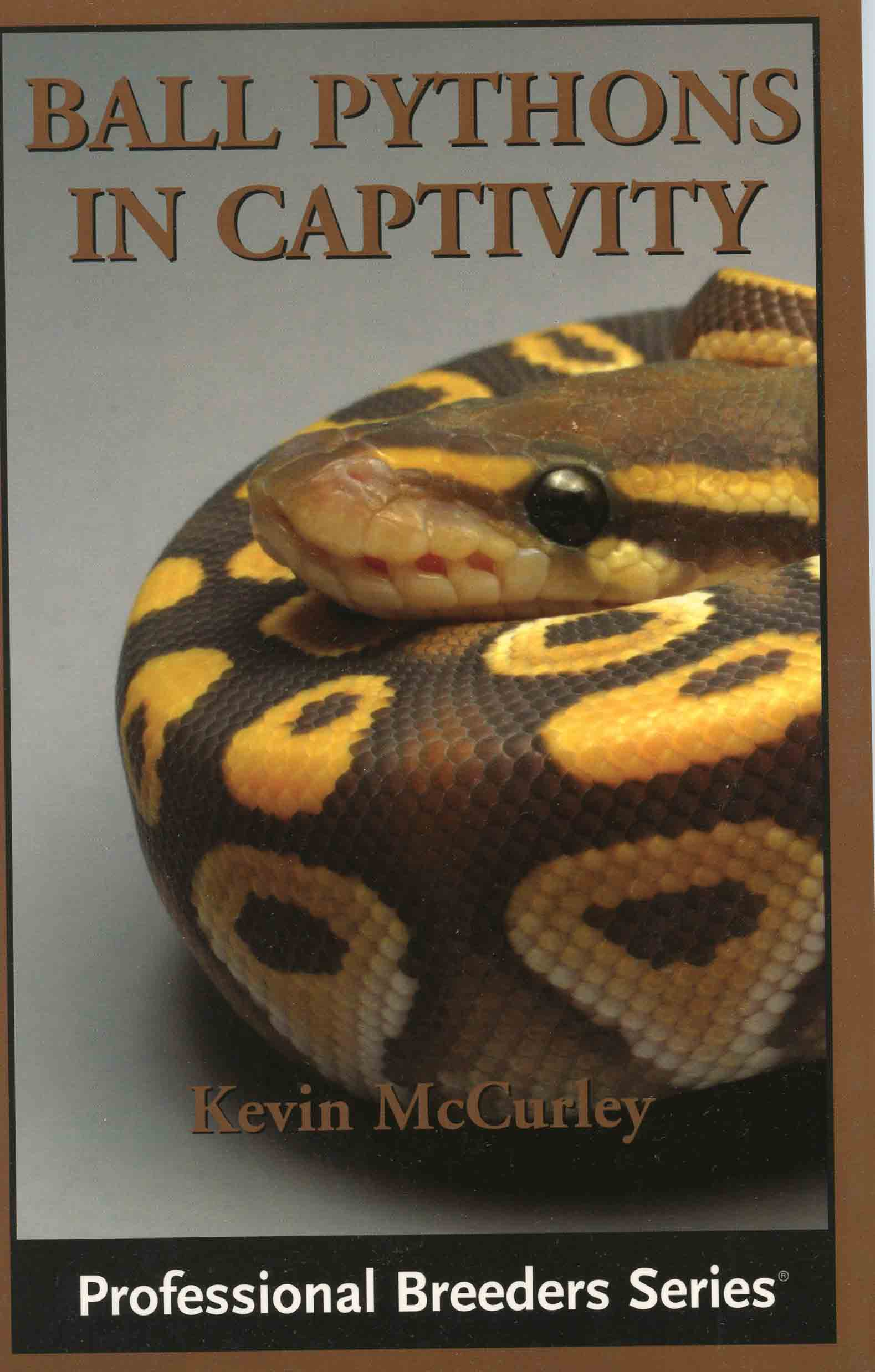 Image for Ball Pythons in Captivity,