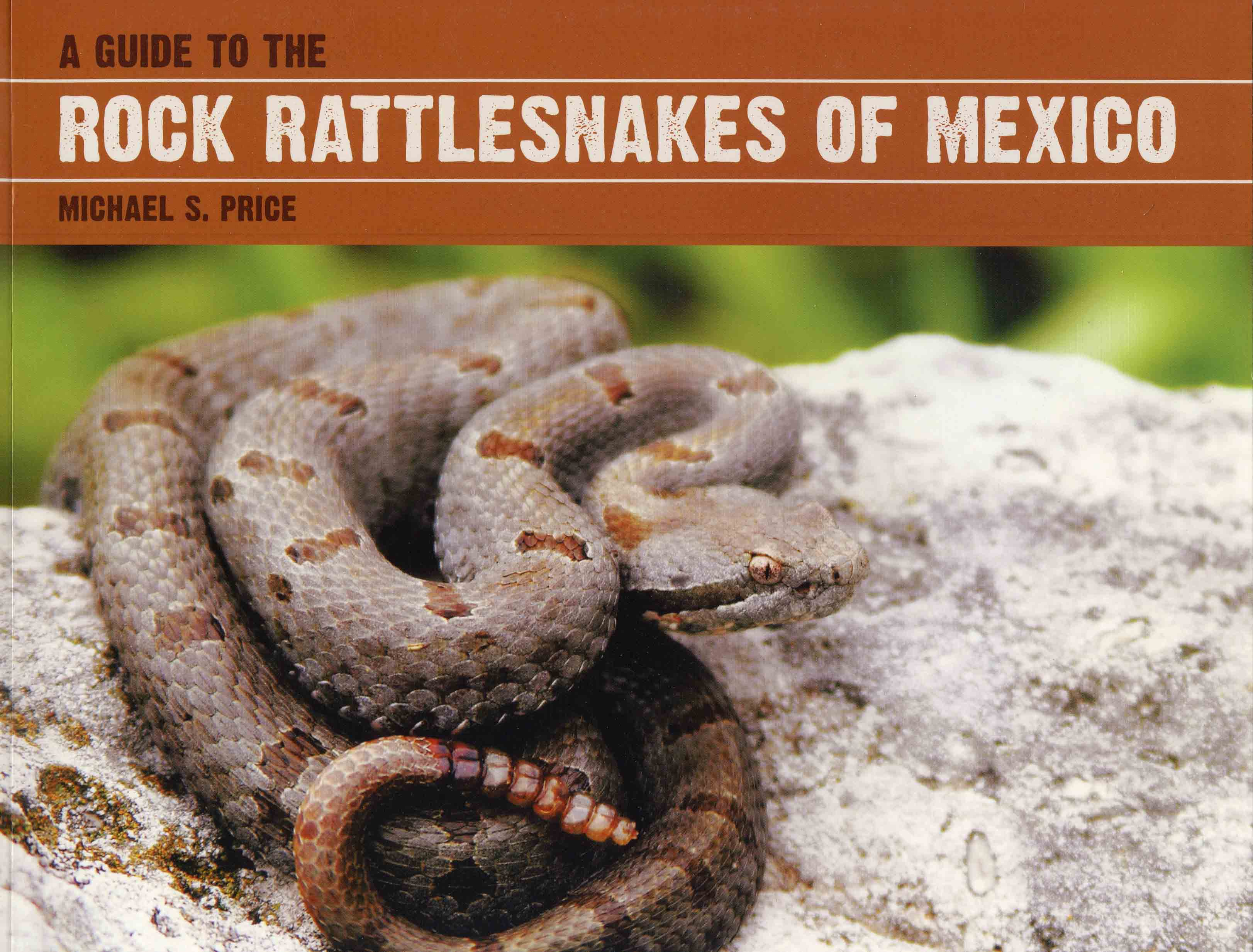 Image for A Guide to the Rock Rattlesnakes of Mexico,