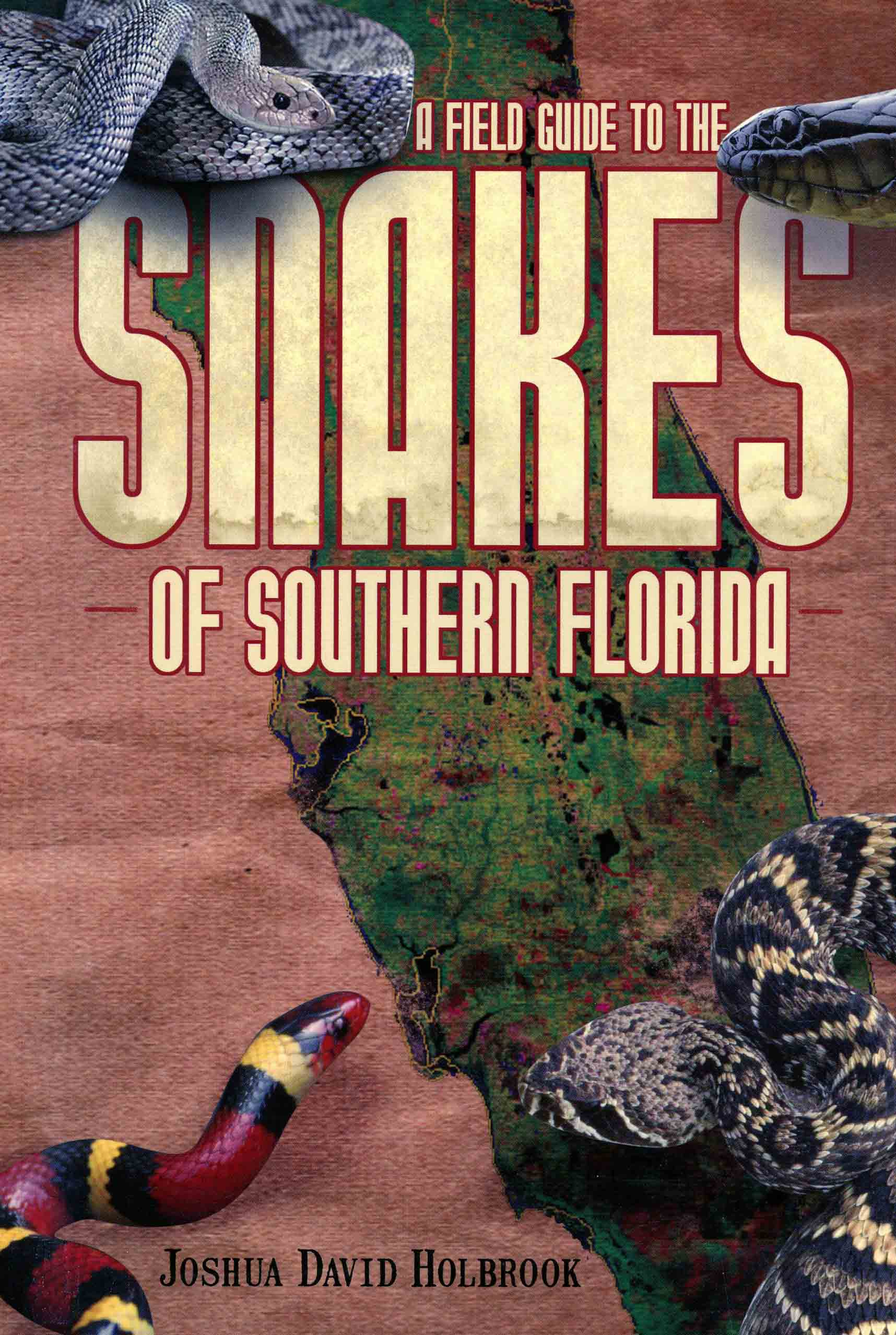 Image for A Field Guide to the Snakes of Southern Florida,