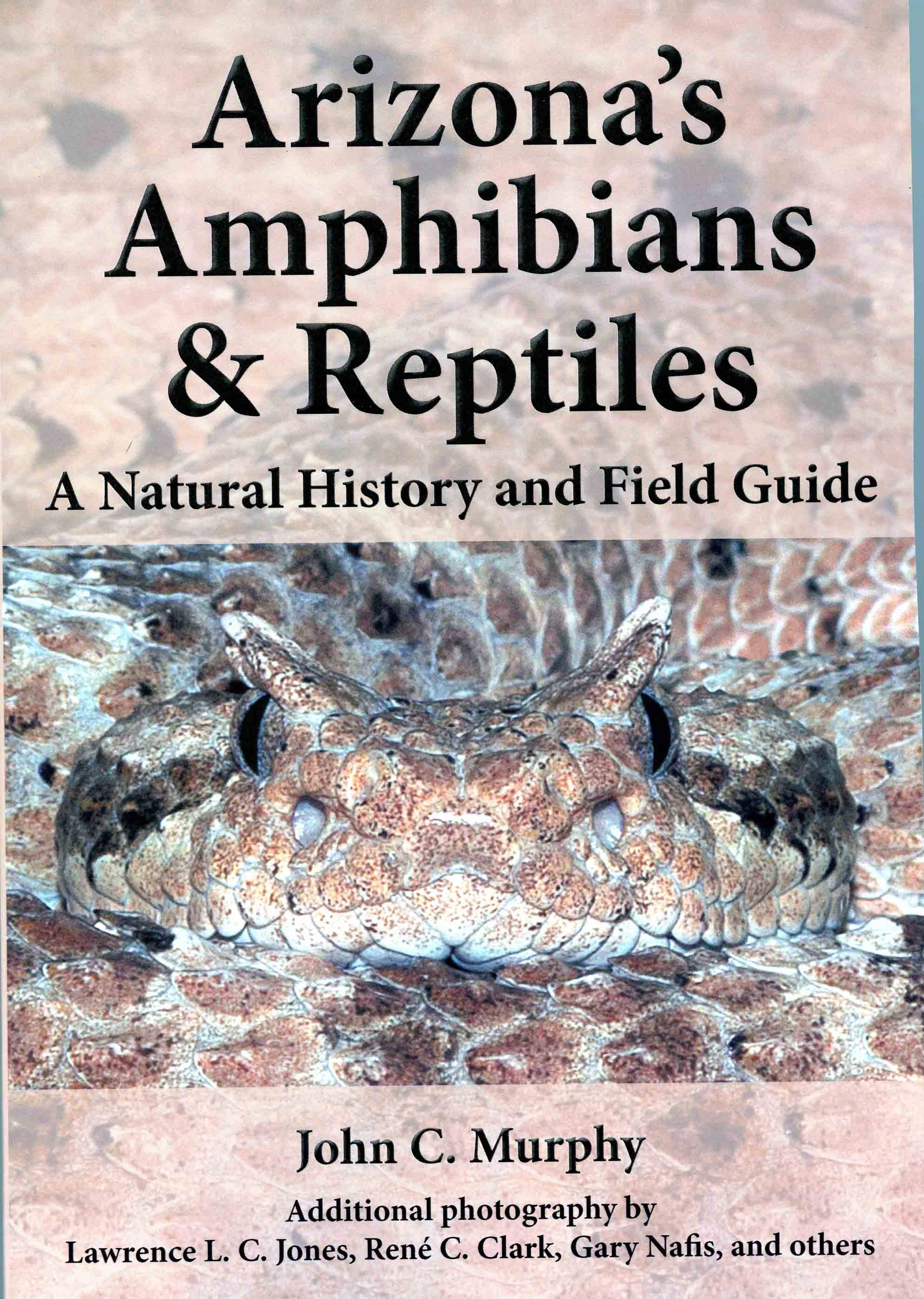 Image for Arizona's Amphibians & Reptiles: A Natural History and Field Guide,