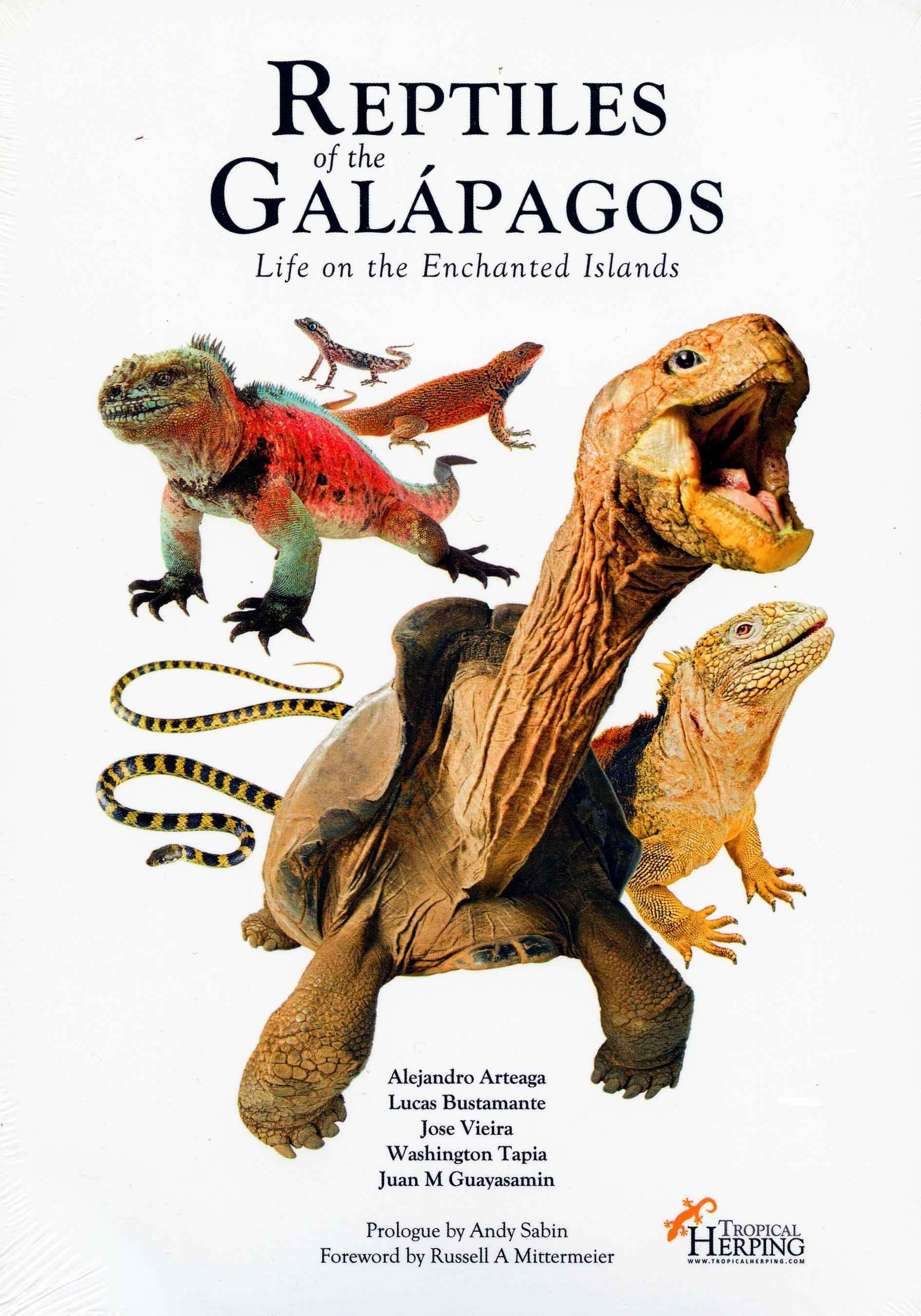 Image for Reptiles of the Galápagos: Life on the Enchanted Islands,