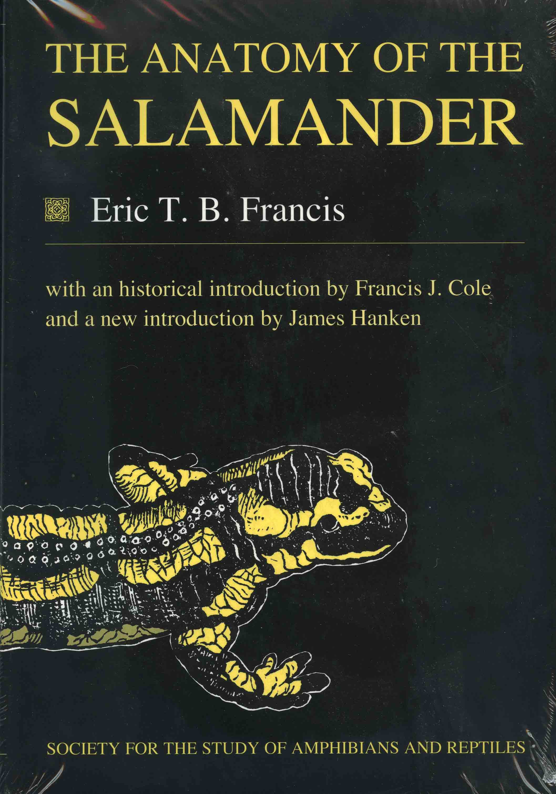 Image for The Anatomy of the Salamander,
